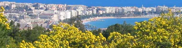 Landscape of the French Riviera